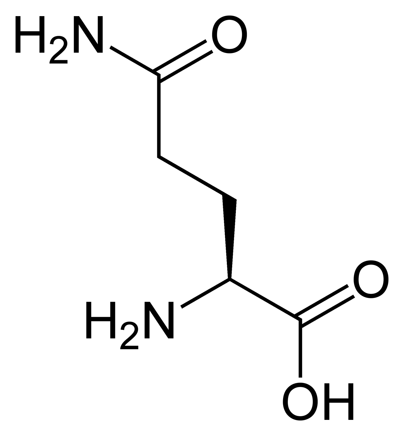 L-glutamine-2D-skeletal