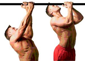 Types of pull-ups 7