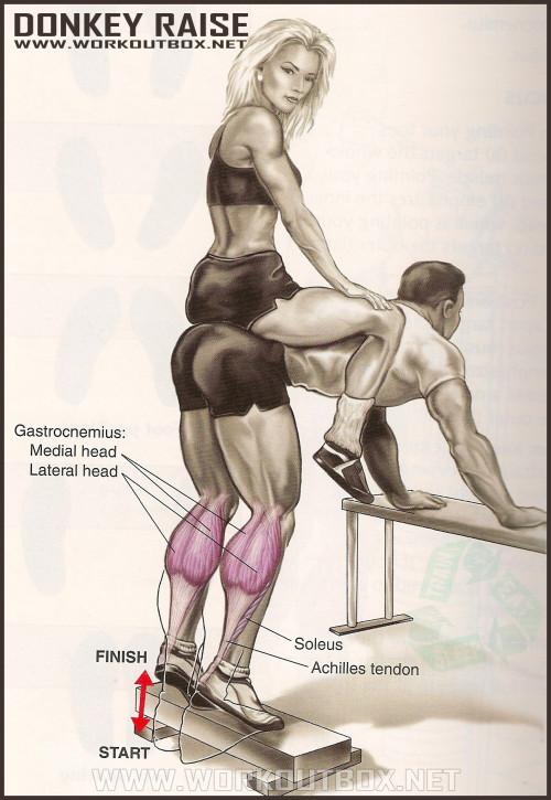 Calf Exercises: How to Donkey Raise