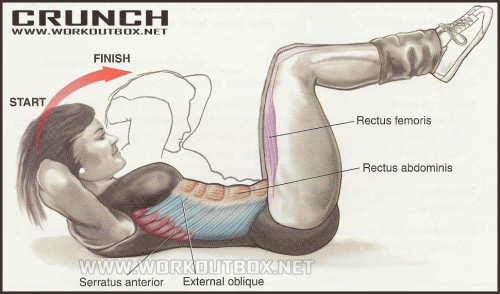 How to Basic Crunch