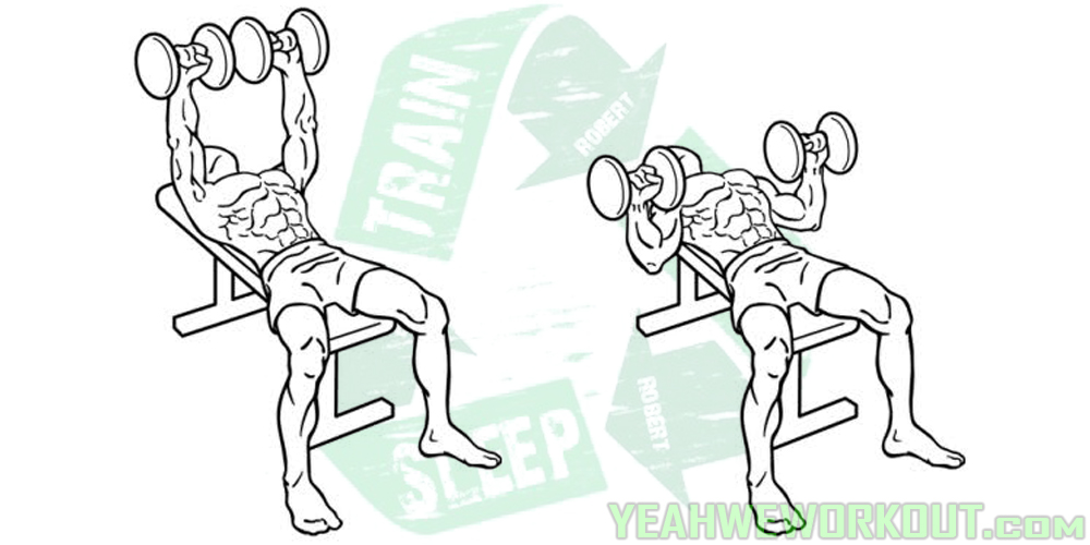 2 Dumbbell Bench Press