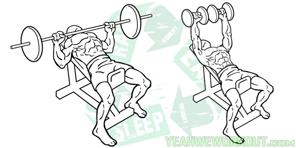 4 Inclined Bench Press