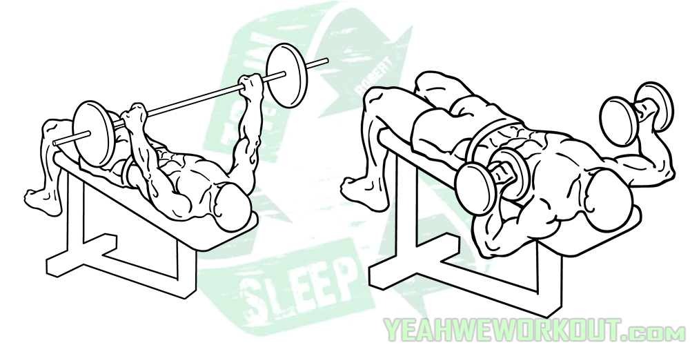 5 Decline Bench Press