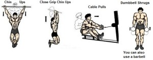 Chin ups Close grip chin ups close handed cable pulls dumbbell shrugsback exercise muscle bodybuilding