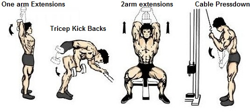 One Arm Overhead Dumbbell Triceps Extension Big arms Tricep Kickbacks Two arm seated dumbbell exntesions Cable Pressdown for tripces exercises