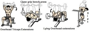 Overhead Tricep Extensions Training Tips Close grip bench press dips Lying overhead triceps extensions Workout Big Arms