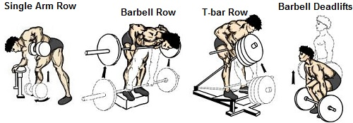 Single Arm Row Barbell Deadlifts T Bar Rows Back Muscle Workout Bodybuilding