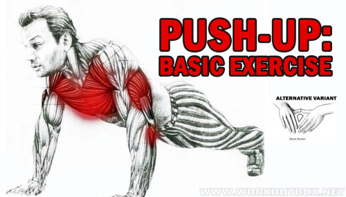 PUSH-UP: Basic Exercise
