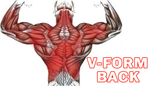 V-Form Back Workout