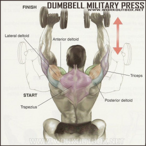 Dumbbell Military Press