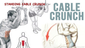 How To Standing Cable Crunch