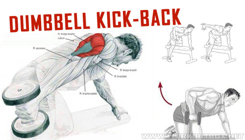 Dumbbell Kick-Back