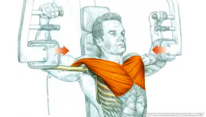 Chest Exercise at the Butterfly Machine