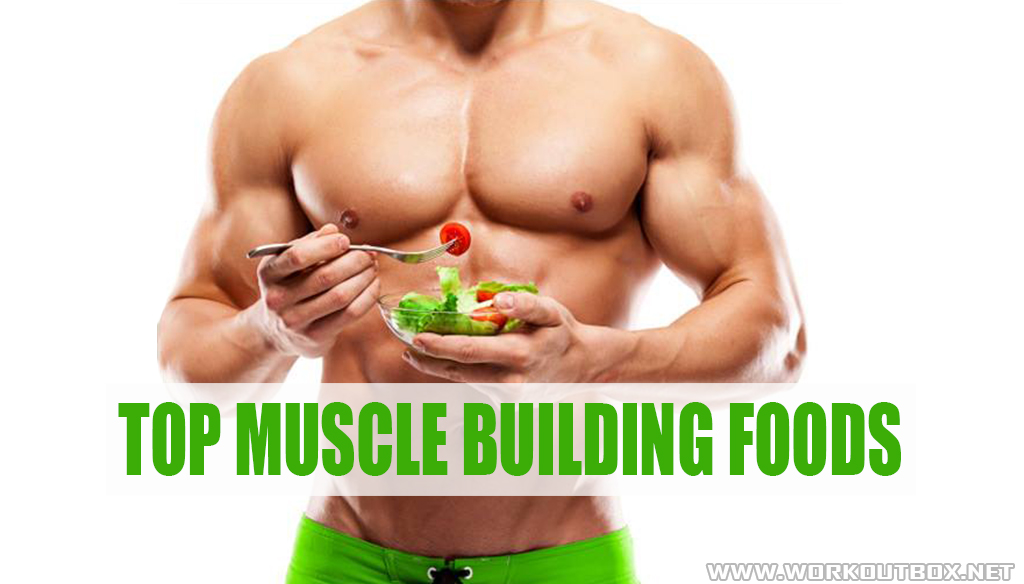 Top Muscle Building Foods Fitness Workouts Amp Exercises