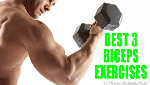 Best 3 Biceps Exercises