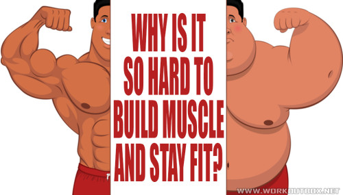 Why is it So Hard to Build Muscle and Stay Fit?