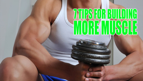7 Tips for Building More Muscle