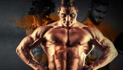 How To Find The Best Bodybuilding Training Program For You!