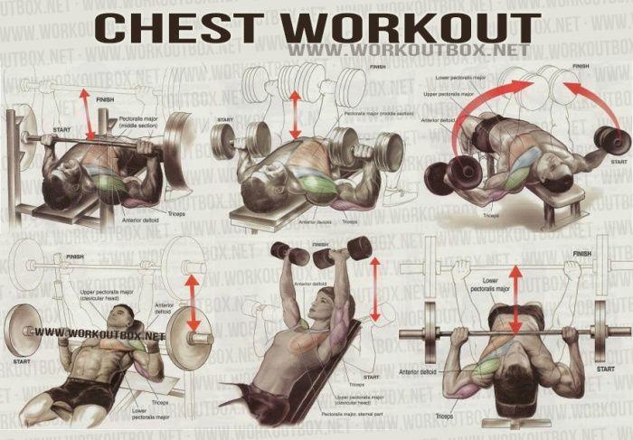 Best Way To Build Body Mass
