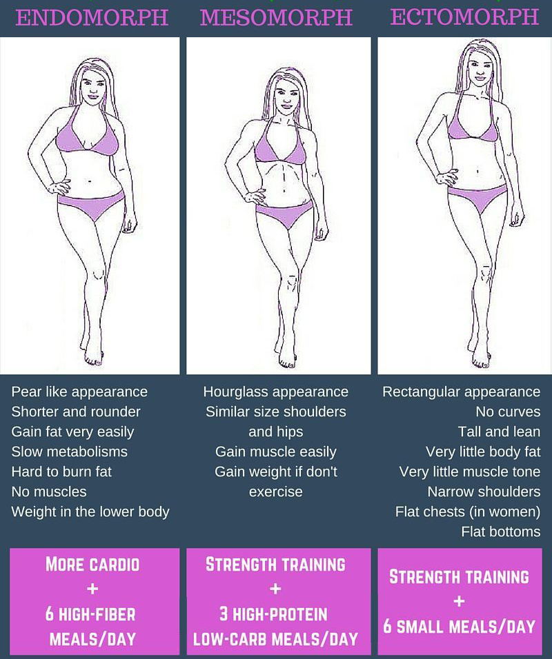Women Body Types Ectomorph Mesomorph Endomorph | Male ...