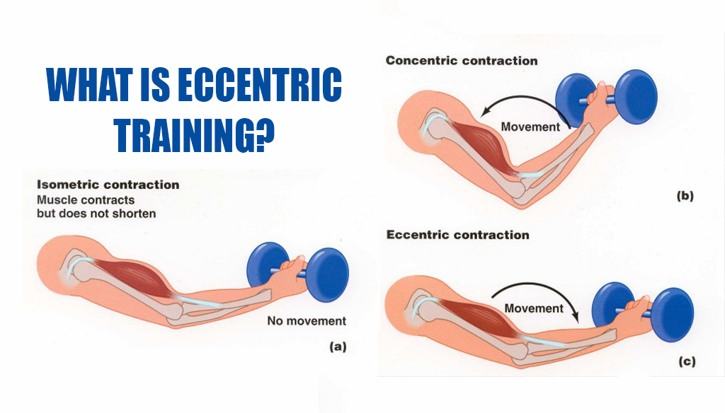 What is Eccentric Training? | Fitness Workouts & Exercises