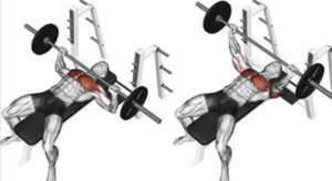 Bench Press | How To Increase Your 1 Rep Max