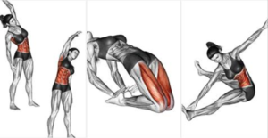 The Best Stretching Exercises To Enhance Your Lifiting