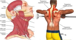 2 Simple Exercises to Boost Neck Strength