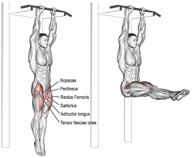 Image result for proper hanging leg raise form
