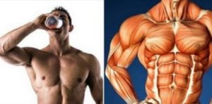 4 Best Supplements For Improving Muscle Gains