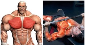 How to Intensify Your Bench Press Workout