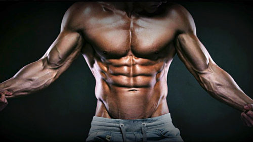 How To Get Your Abs Visible In Just 28 Days !
