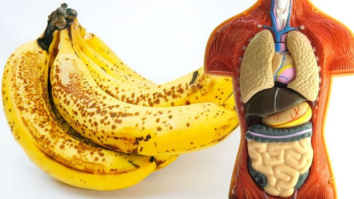 Eating 2 Bananas Per Day For A Month, This Is What Happens To Your Body