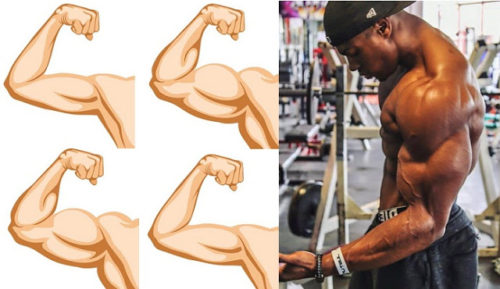 Build Arm Muscle With These 4 Tips For Killer Arms