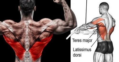 7 Must-Do Exercises To Get Wide Back