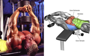 Chest Workout 40 Minutes Complete With 6 Exercises
