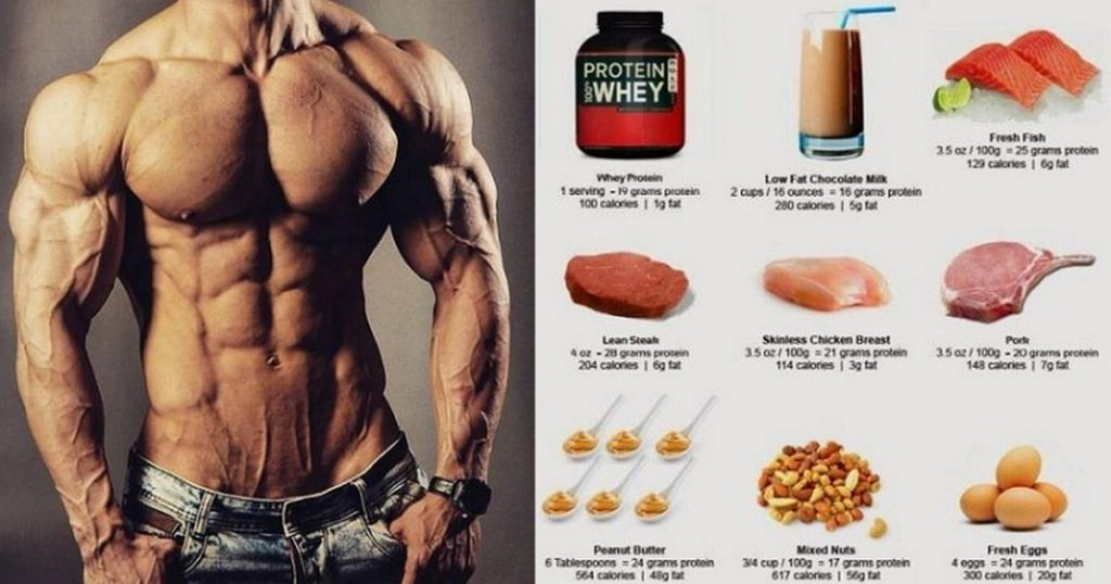 What Protein Builds Muscle