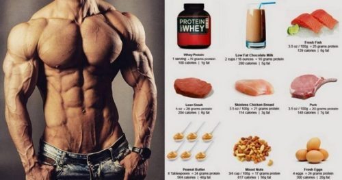 High Protein Foods To Build Muscle – Focus on These Six