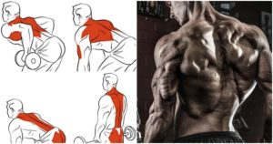 7 Back Workouts For V- Back