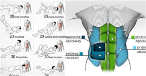 How to Find the Right ABS Workout Program