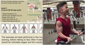 Bigger Arms in 4 Weeks – Increase Arm Muscle Strength and Size