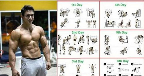 8 Weeks Workout Programme For Beginners