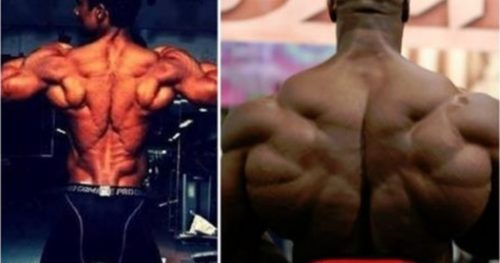 8 Tips To Improve Upper Back Mass