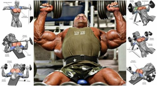 5 Types of Supersets To Increase Size And Definition