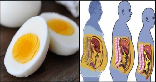 5 Ingredients You Need To Add To Your Breakfast to Rev Up Your Metabolism and Get Rid of The Excess Fat