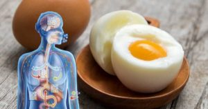 Why Eggs Are a Killer Fat Loss Food
