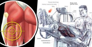 Hamstrings Workout: Improve Hamstring Strength And Definition