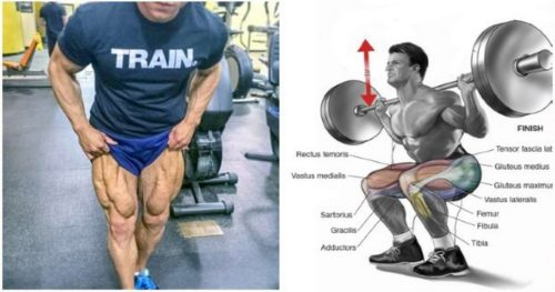 The Mass-Building Leg Workout Routine