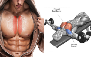 3 Best Exercise To Target Inner Chest