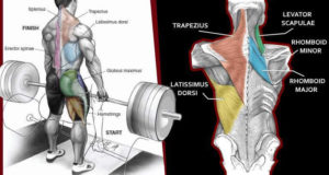 4 Things You Should Never Do On Back Day !